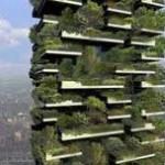 grattacieli-green
